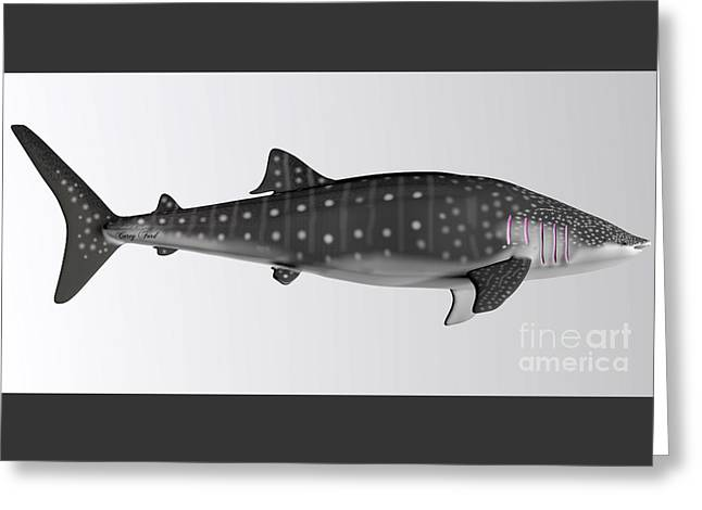 Sea Life Digital Art Greeting Cards - Whale Shark Side Profile Greeting Card by Corey Ford