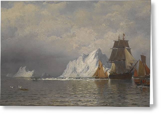 Hunting Greeting Cards - Whaler and Fishing Vessels near the Coast of Labrador Greeting Card by William Bradford