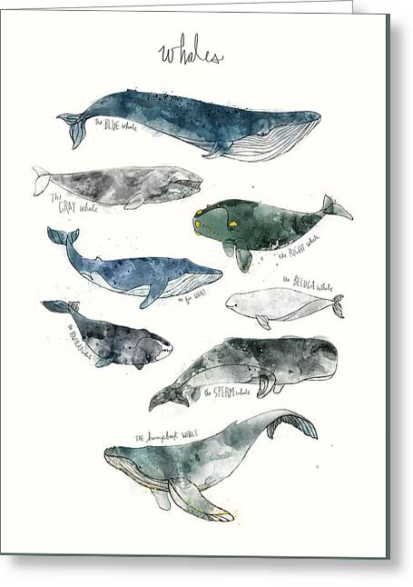 Whales Greeting Card by Amy Hamilton