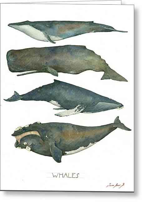 Whales Poster Greeting Card by Juan Bosco