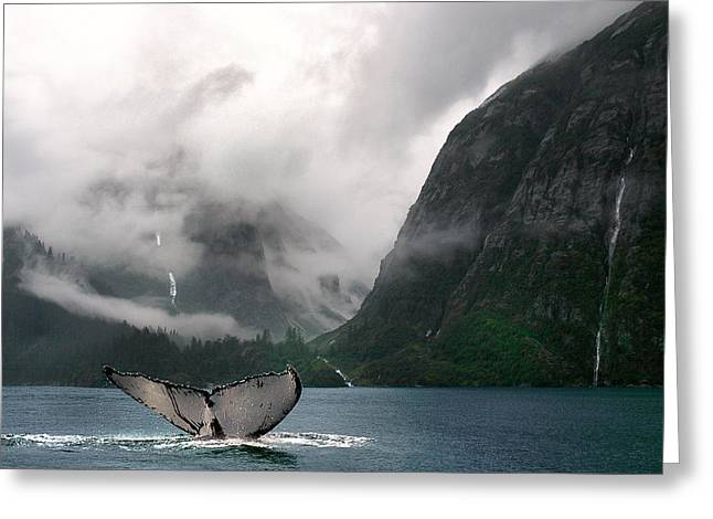 Whale Tail Greeting Cards - Whales Tale Greeting Card by Harry Spitz