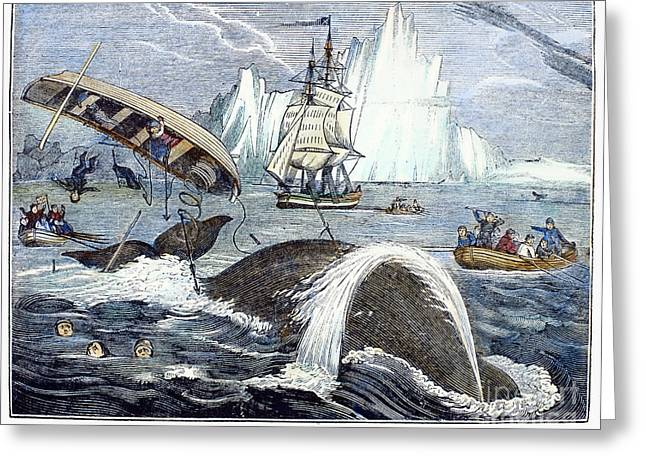 1833 Greeting Cards - Whaling, 1833 Greeting Card by Granger