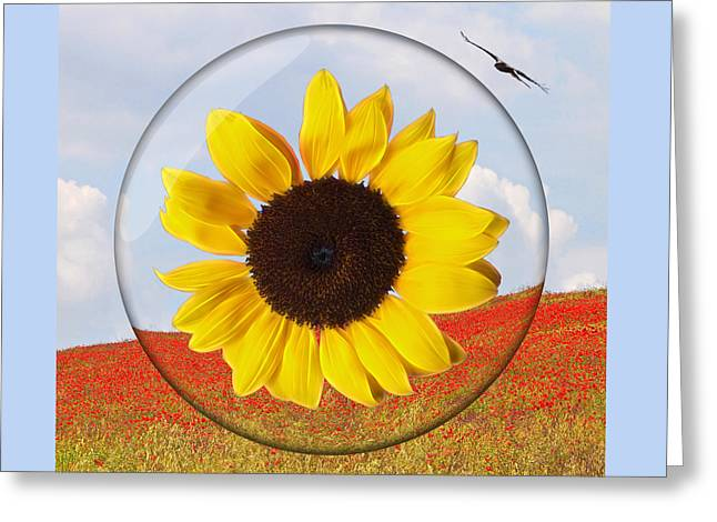 What A Day For A Daydream Greeting Card by Gill Billington