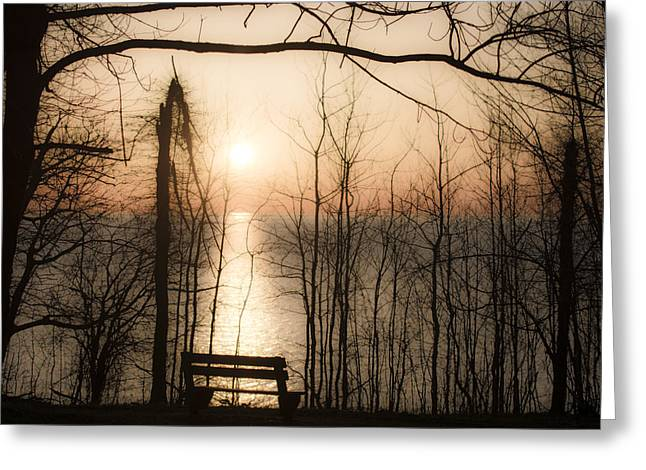Trees Reflecting In Water Greeting Cards - What a View Greeting Card by Tracy Winter
