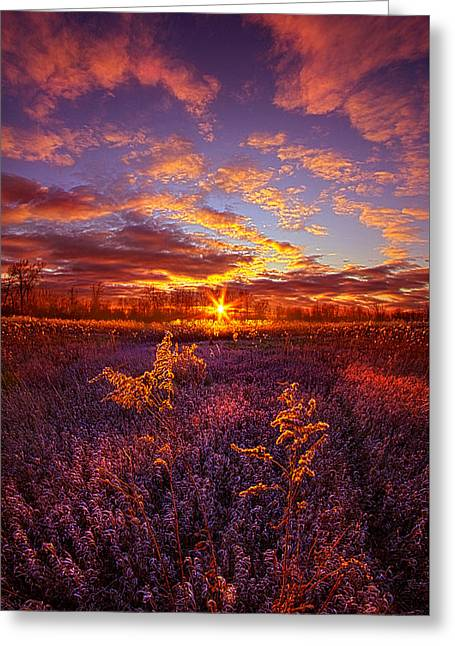 What Forever Means Greeting Card by Phil Koch
