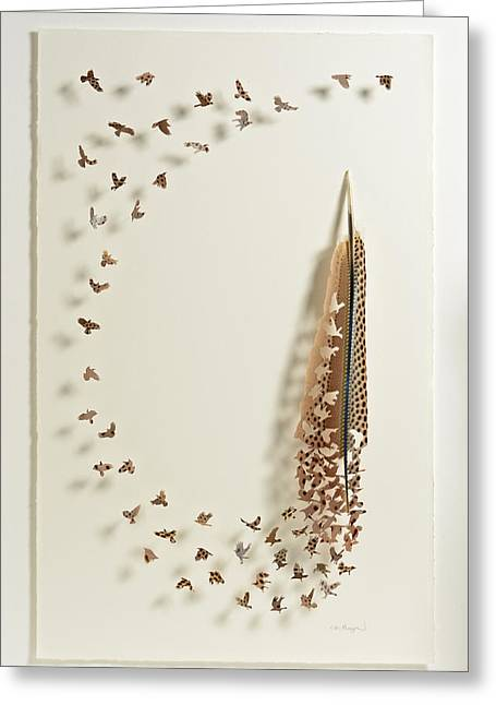 What Happens When You Tip A Feather Upside Down Greeting Card by Chris Maynard