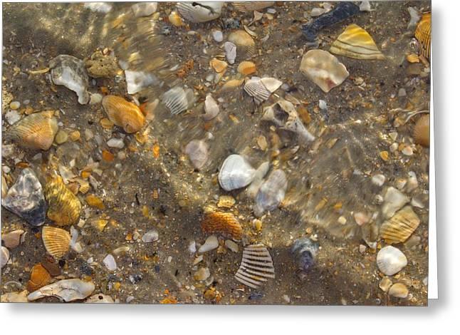 Ocean Art Photos Greeting Cards - What Lies Beneath Greeting Card by Brian Hamilton