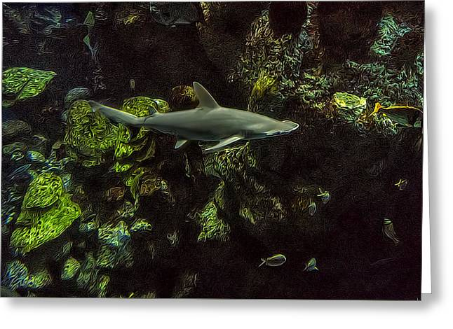 Aquarium Fish Greeting Cards - What Lies Beneath Greeting Card by Janet Fikar