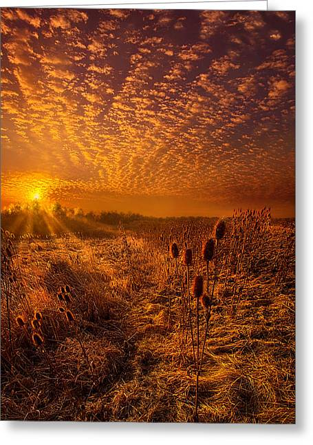 What Will Be Will Be Greeting Card by Phil Koch