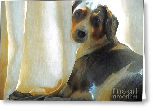 Puppies Digital Greeting Cards - Whats Behind The Curtain Greeting Card by Theresa Campbell