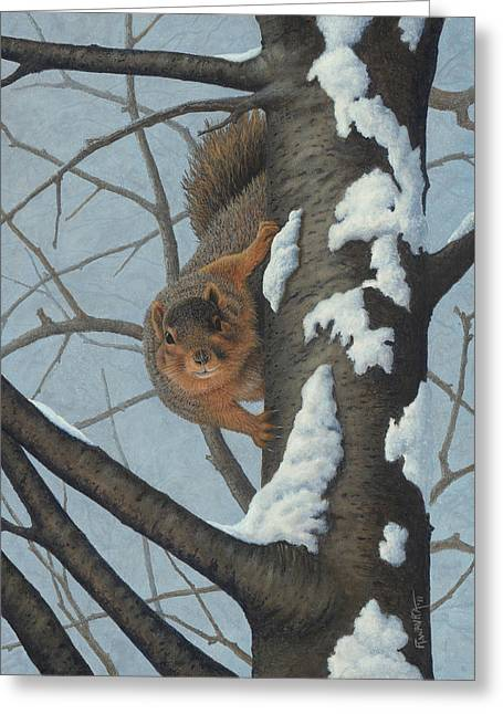 Fox Squirrel Paintings Greeting Cards - Whats Going On? - Fox Squirrel Greeting Card by Robert Wavra