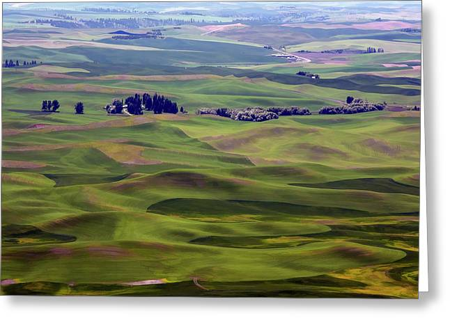 Farm Towns Greeting Cards - WHEAT FIELDS of the PALOUSE - EASTERN WASHINGTON STATE Greeting Card by Daniel Hagerman