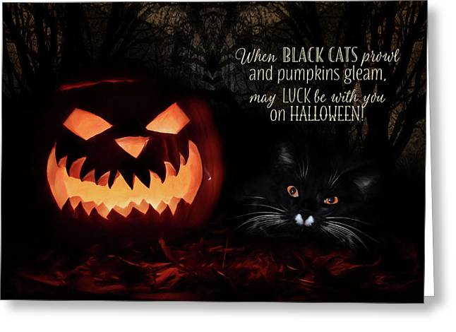 When Black Cats Prowl Greeting Card by Lori Deiter