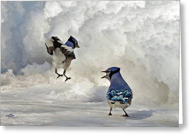 Songbird Prints Greeting Cards - When I Say Jump Greeting Card by Brian Pelkey