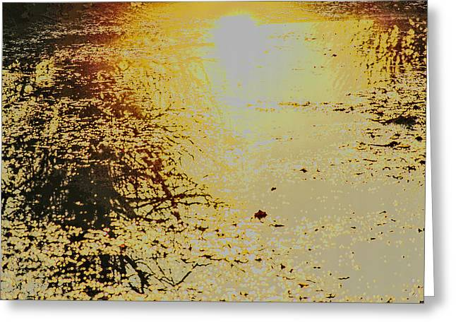 Reflex Greeting Cards - When the Sun Goes Swimming Greeting Card by Svetlana Neskovska