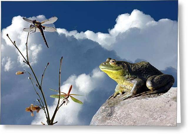 Wishes Greeting Cards - Where Dragonflies Grow on Trees Greeting Card by Barbara  White