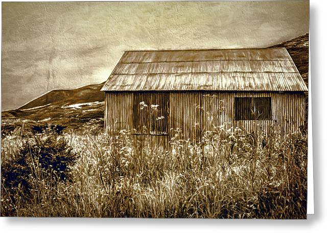 Shack Greeting Cards - Where Dreams Died Greeting Card by Maria Coulson