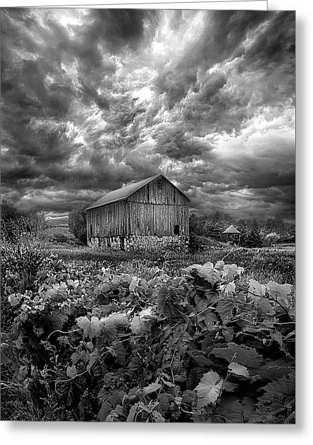 Where Ghosts Of Old Dwell And Hold Greeting Card by Phil Koch