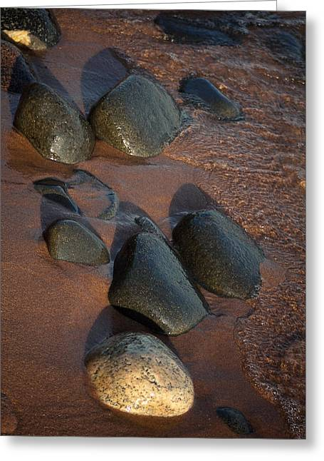 Agate Beach Greeting Cards - Where Past This Land Greeting Card by Cynthia Dickinson