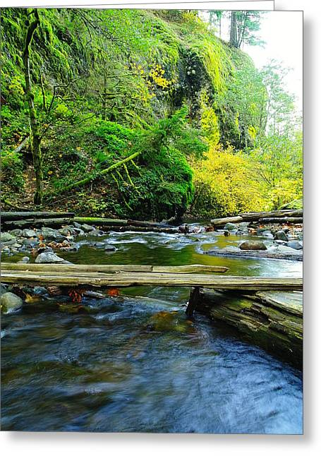 Stream Greeting Cards - Where you cross the river Greeting Card by Jeff  Swan