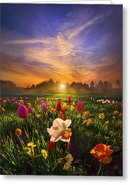 Sun Ray Greeting Cards - Wherever The Journey Takes Us Greeting Card by Phil Koch
