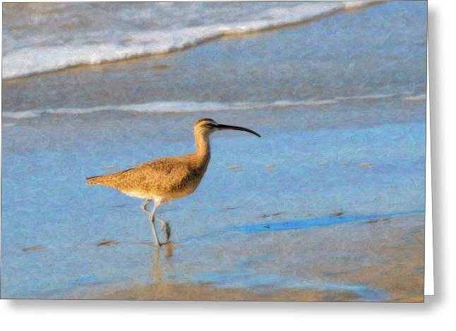 Whimbrel Greeting Card by Betty LaRue