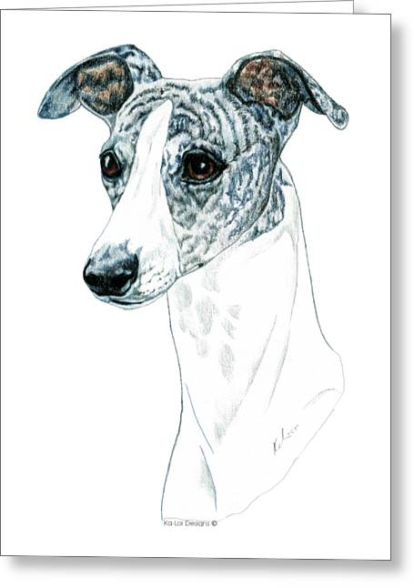 Whippet, Brindle Greeting Card by Kathleen Sepulveda
