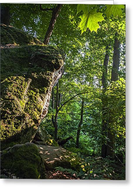 Ohio. Oh Greeting Cards - Whipps Ledges 3 Greeting Card by Sharon Norman