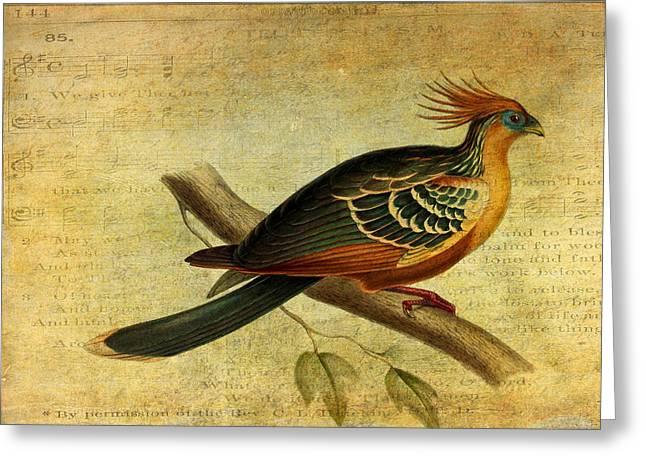 Zoology Greeting Cards - Whirring Pheasant Springs Greeting Card by Sarah Vernon