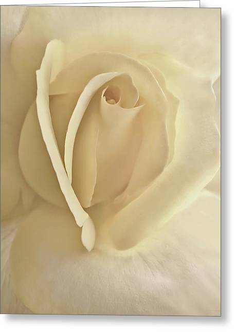 Cream Rose Greeting Cards - Whisper of a Soft Yellow Rose Flower Greeting Card by Jennie Marie Schell