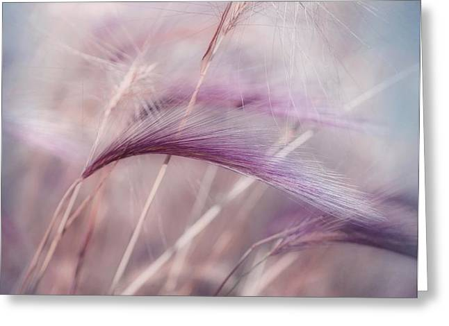 whispers in the wind Greeting Card by Priska Wettstein