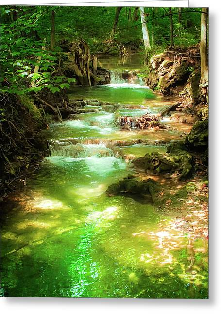 Whispers Of Evergreen Greeting Card by Karen Wiles