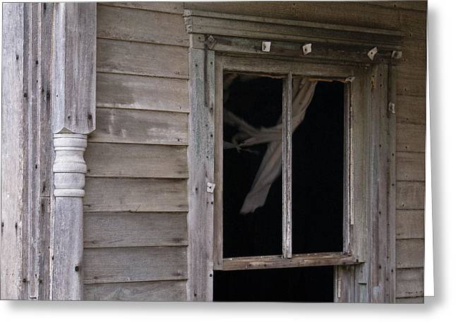 West Fork Greeting Cards - Whispy Ghost Greeting Card by Douglas Barnett
