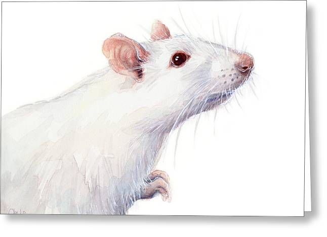 Red Eye Greeting Cards - White Albino Rat Watercolor Greeting Card by Olga Shvartsur
