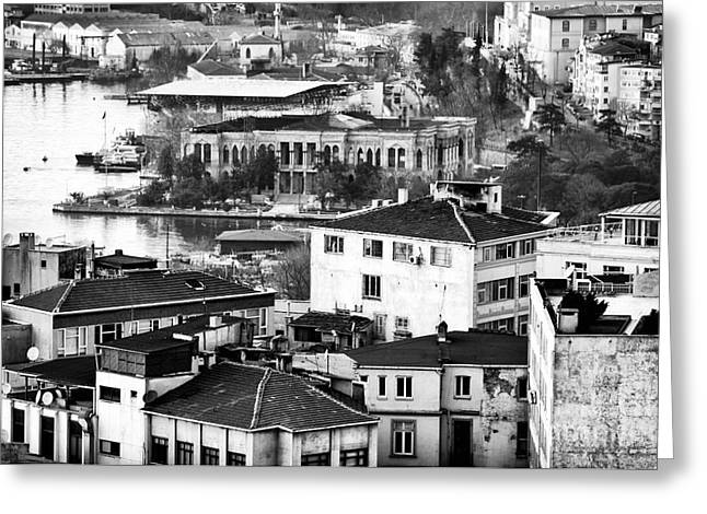 Stanbul Greeting Cards - White and Black in Istanbul Greeting Card by John Rizzuto