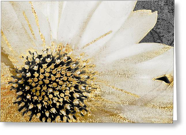 White And Gold Daisy Greeting Card by Mindy Sommers