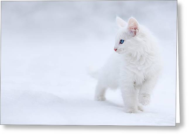 White As Snow Greeting Card by Esm?e Prexus