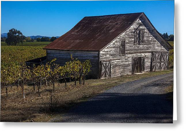 Grapevine Photographs Greeting Cards - White barn Greeting Card by Garry Gay