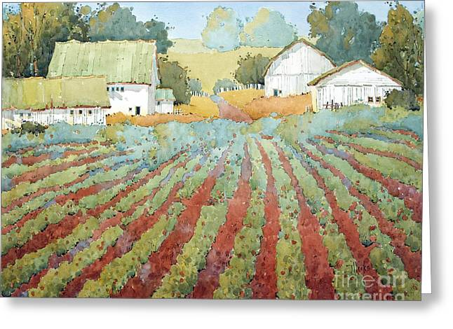 White Barnes In Virginia Greeting Card by Joyce Hicks