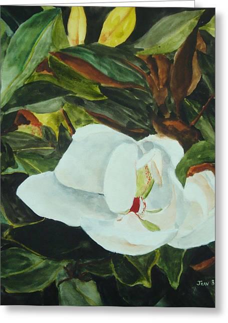 Jean Blackmer Greeting Cards - White Beauty Greeting Card by Jean Blackmer