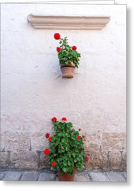 White Colonial Wall And Flowers Greeting Card by Jess Kraft