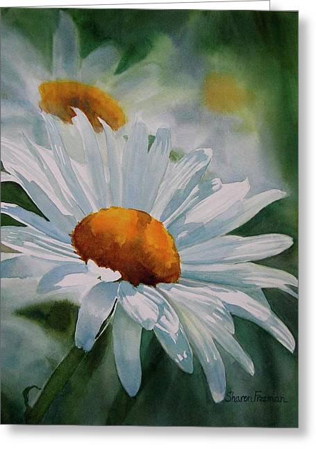 White Daisies Greeting Card by Sharon Freeman