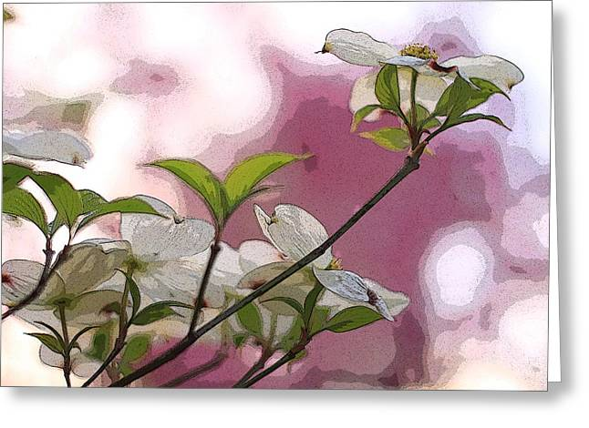 Indiana Dogwood Trees Greeting Cards - White Dogwood Flowers Greeting Card by Andrea Kappler