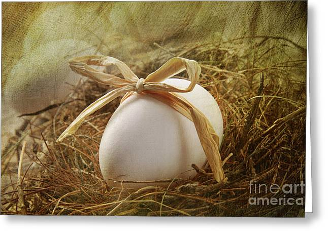 White Egg With Straw Bow In Nest Greeting Card by Sandra Cunningham