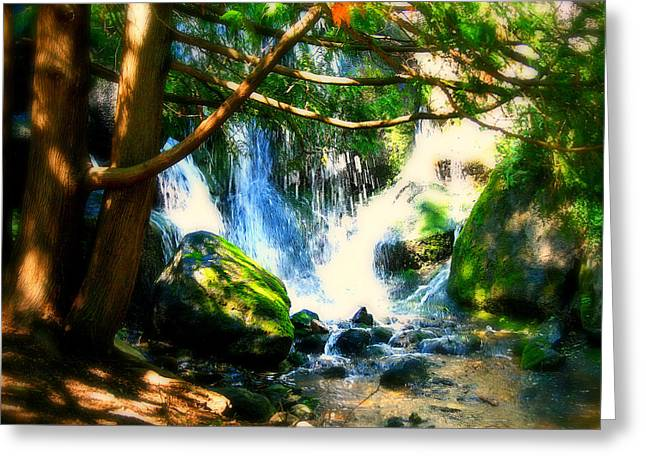 Moss Green Greeting Cards - White Falls Greeting Card by Perry Webster