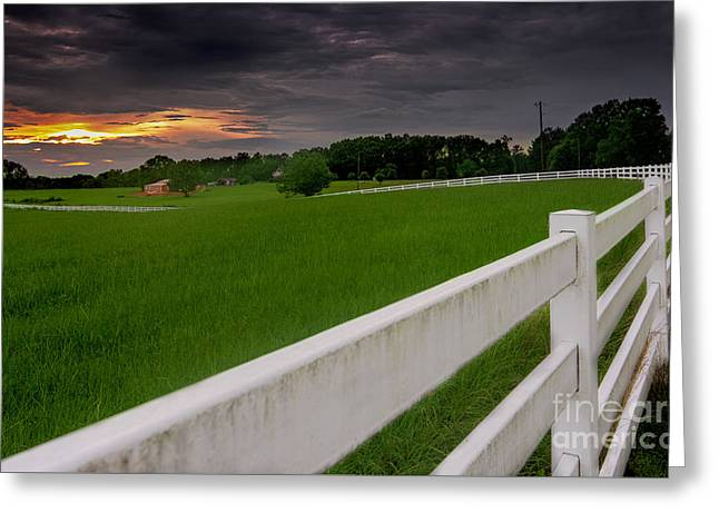 White Tapestries - Textiles Greeting Cards - White fence leads home Greeting Card by James Hennis