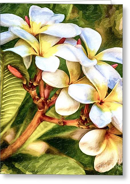Maui Mixed Media Greeting Cards - White Gold Greeting Card by David Millenheft