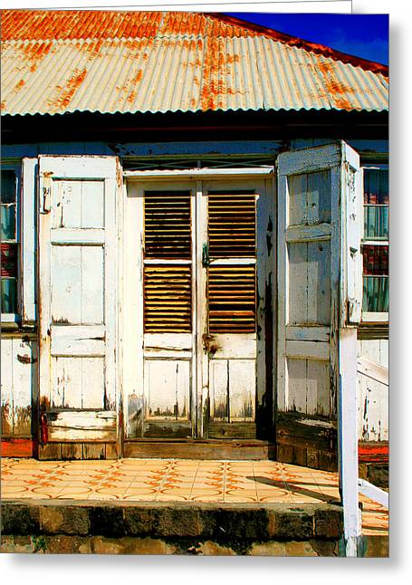Old House Photographs Greeting Cards - White House Greeting Card by Perry Webster