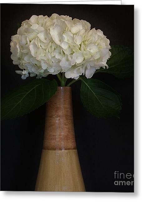White Hydrangea In Gold Vase Greeting Card by Marsha Heiken