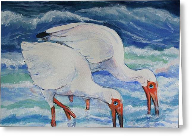 Pairs Greeting Cards - White Ibis in the Surf Greeting Card by Ruth Mabee